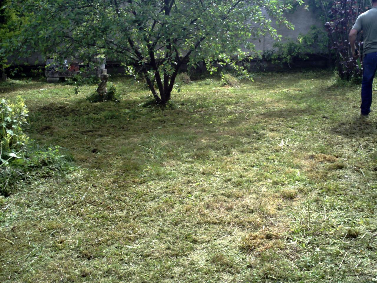 Jardin d broussaill avant cr ation de pelouse for Devis tonte pelouse