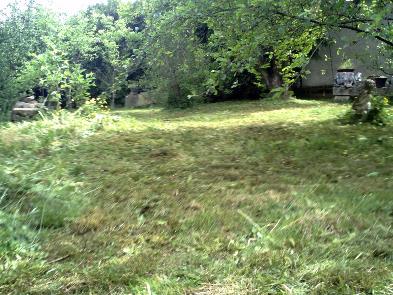 Jardin d broussaill avant cr ation de pelouse 2 for Devis pelouse
