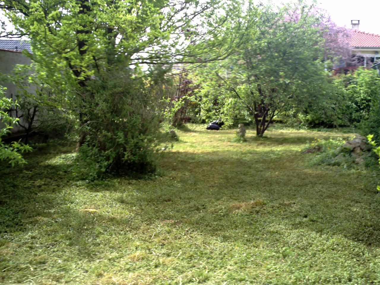 Travaux divers for Creation pelouse